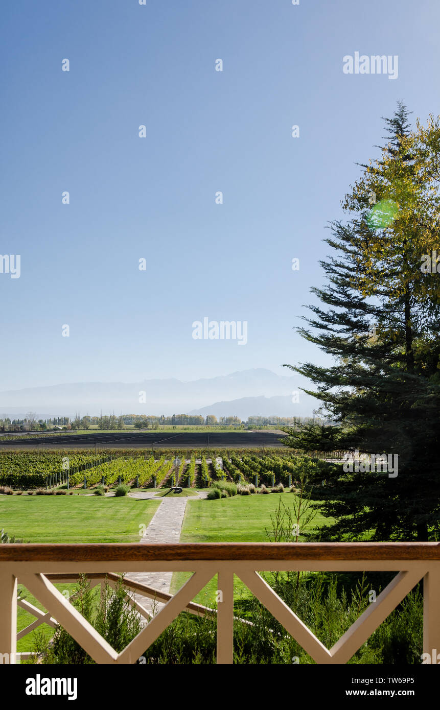 Mendoza, Argentina April 15th 2019: Beautiful mountains and vineyard view from Norton Vineyards Stock Photo