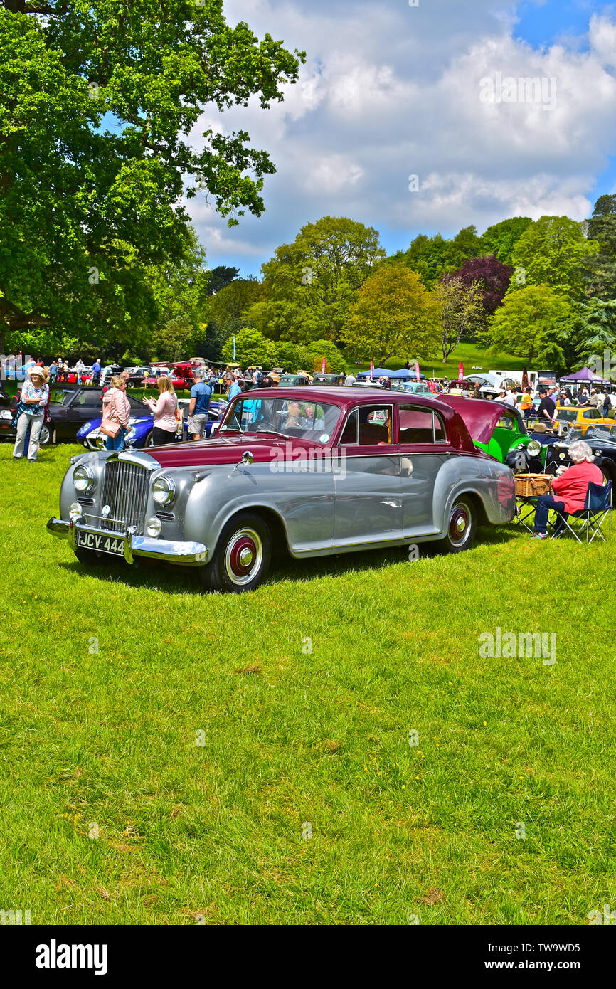 Exeter Classic Car Show.Two tone Bentley S2 Saloon from 1960's. Owners enjoying picnic hamper lunch behind. On grass, sunny day.People wandering past. - Stock Image