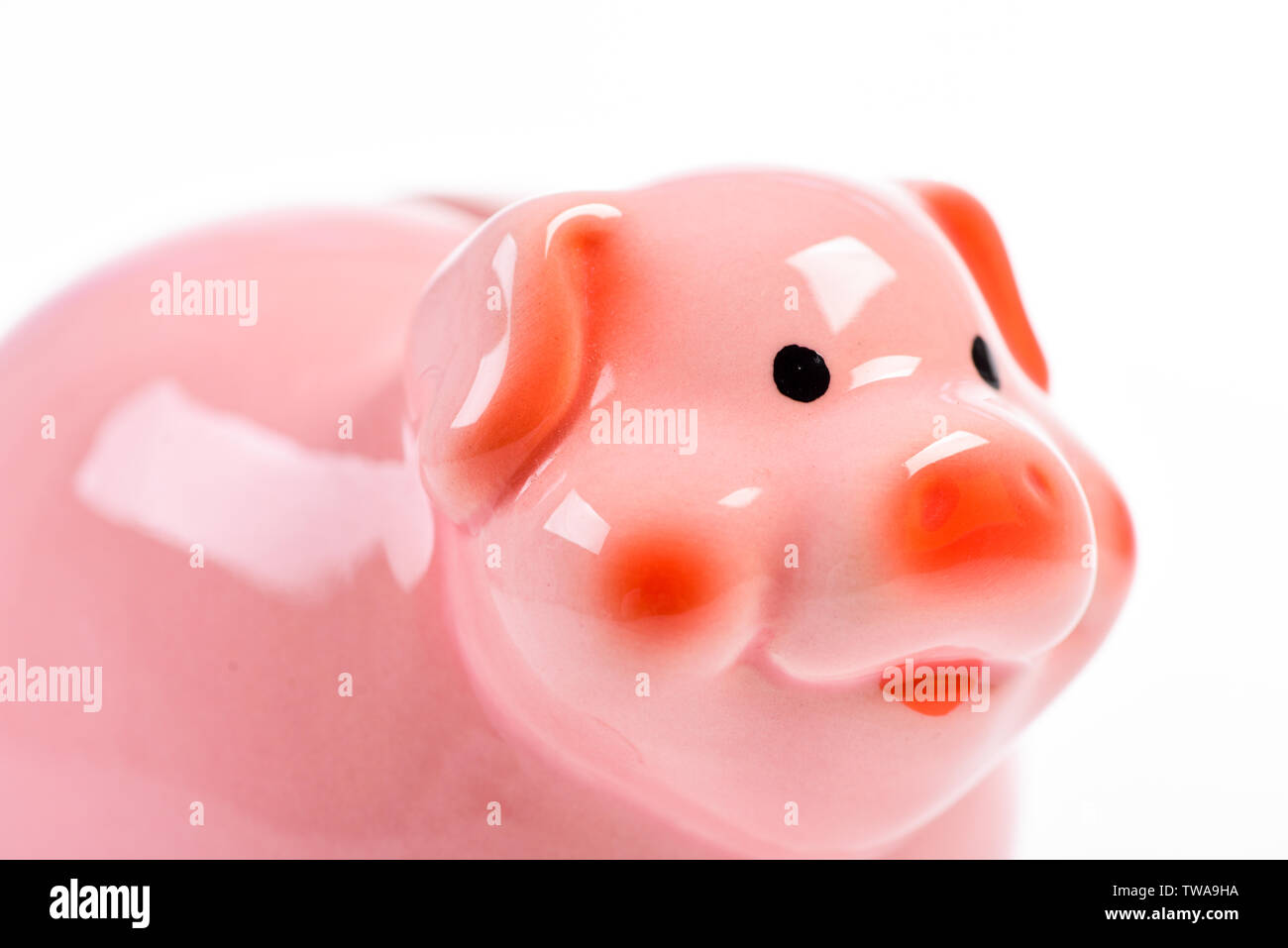 financial problem. income management. planning budget. piggy bank isolated on white. money saving. Banking and profit concept. Banking account. Just making money. - Stock Image