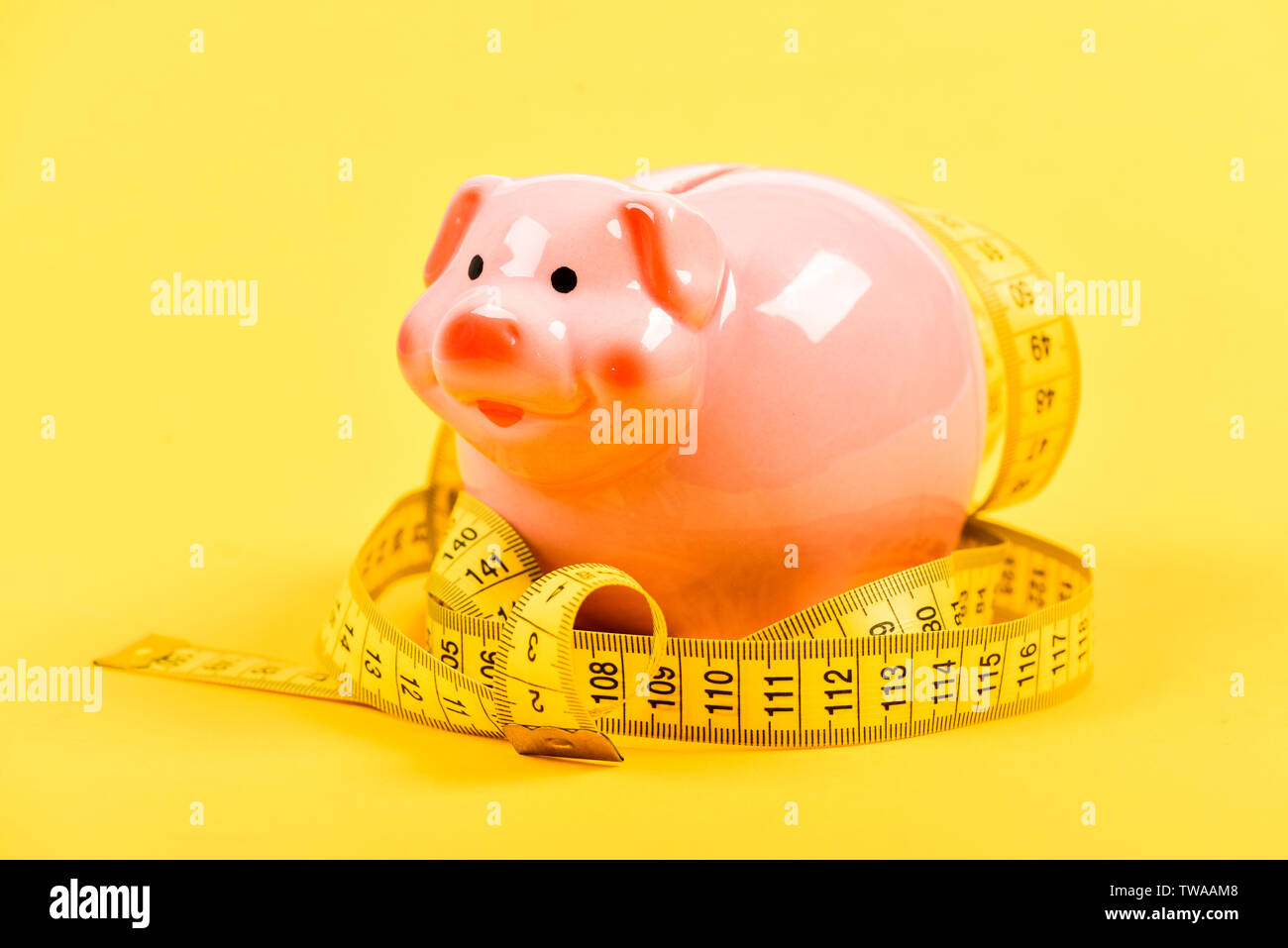 exigency. low pay. Saving money. Deposit. money diet. finance and commerce. piggy bank with measurement tape. Moneybox. loan concept. Take credit. Economy and budget increase. - Stock Image