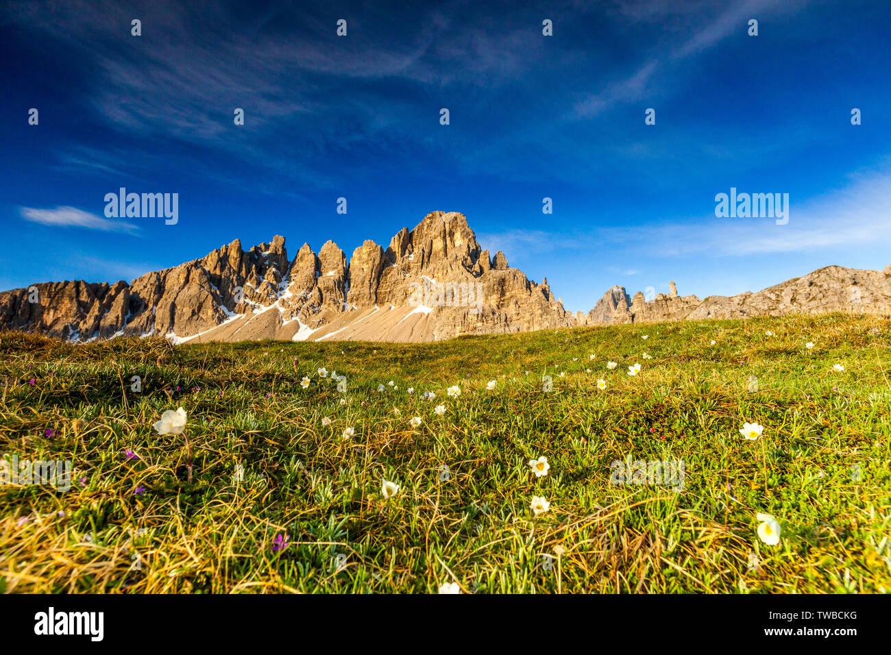 Monte Paterno (Paternkofel) in spring, Sesto Dolomites Natural Park, Trentino-Alto Adige/South Tyrol, Italy - Stock Image