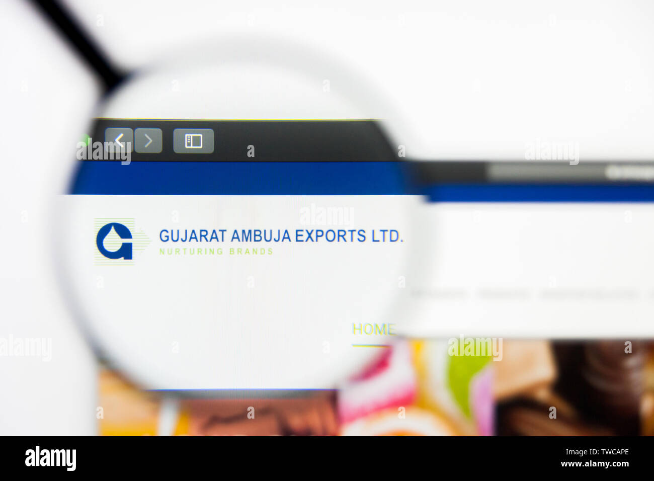New York, New York State, USA - 19 June 2019: Illustrative Editorial of Gujarat Ambuja Exports website homepage. Gujarat Ambuja Exports logo visible o - Stock Image