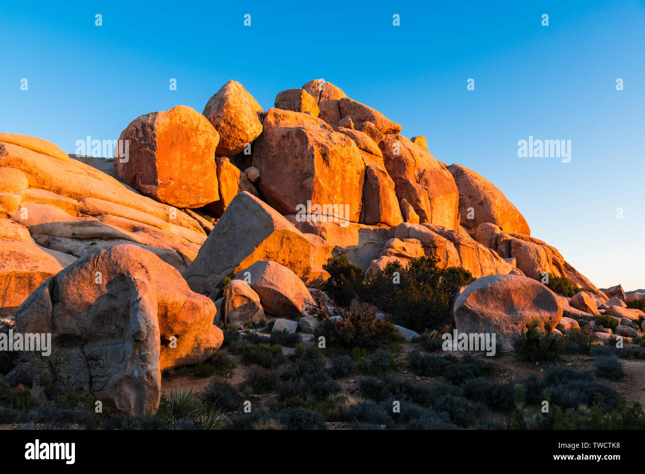 Rock formation of huge sandstone boulders glowing in the golden light of sunset - Joshua Tree National Park, California - Stock Image