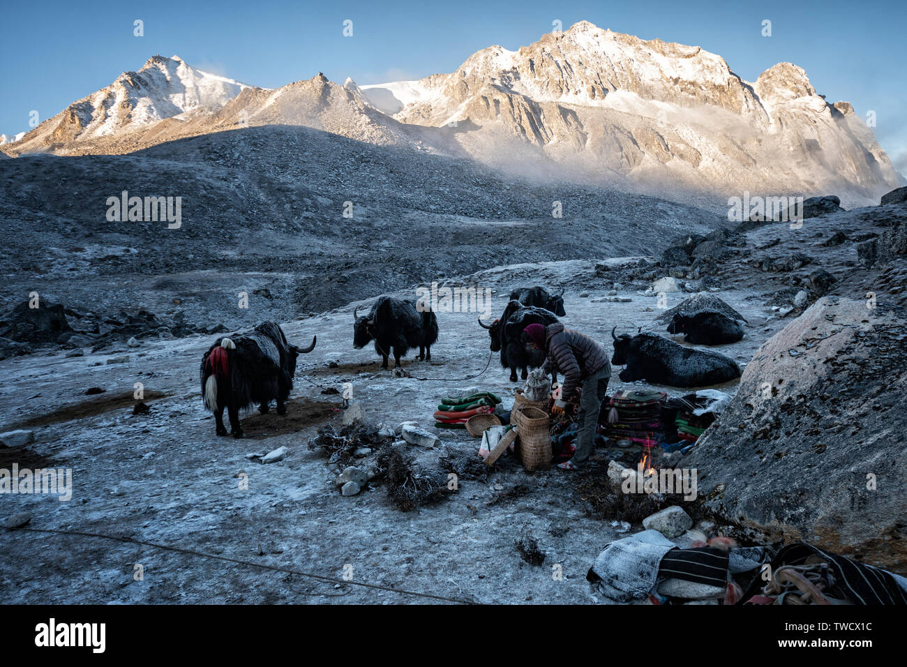 The day rises at the cold camp of Jichu Dramo, Wangdue Phodrang district, Snowman Trek, Bhutan Stock Photo