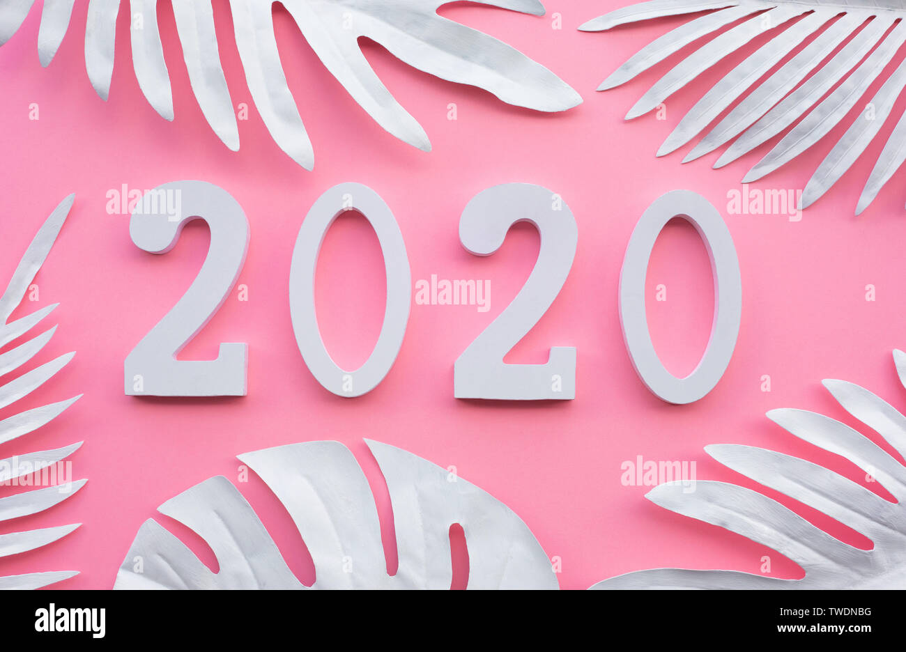 2020 New Year Celebration Concepts Presents Text Number Decoration With Tropical Leaf On Colorful Background Inspiration Ideas Design Goal Plan And A Stock Photo Alamy