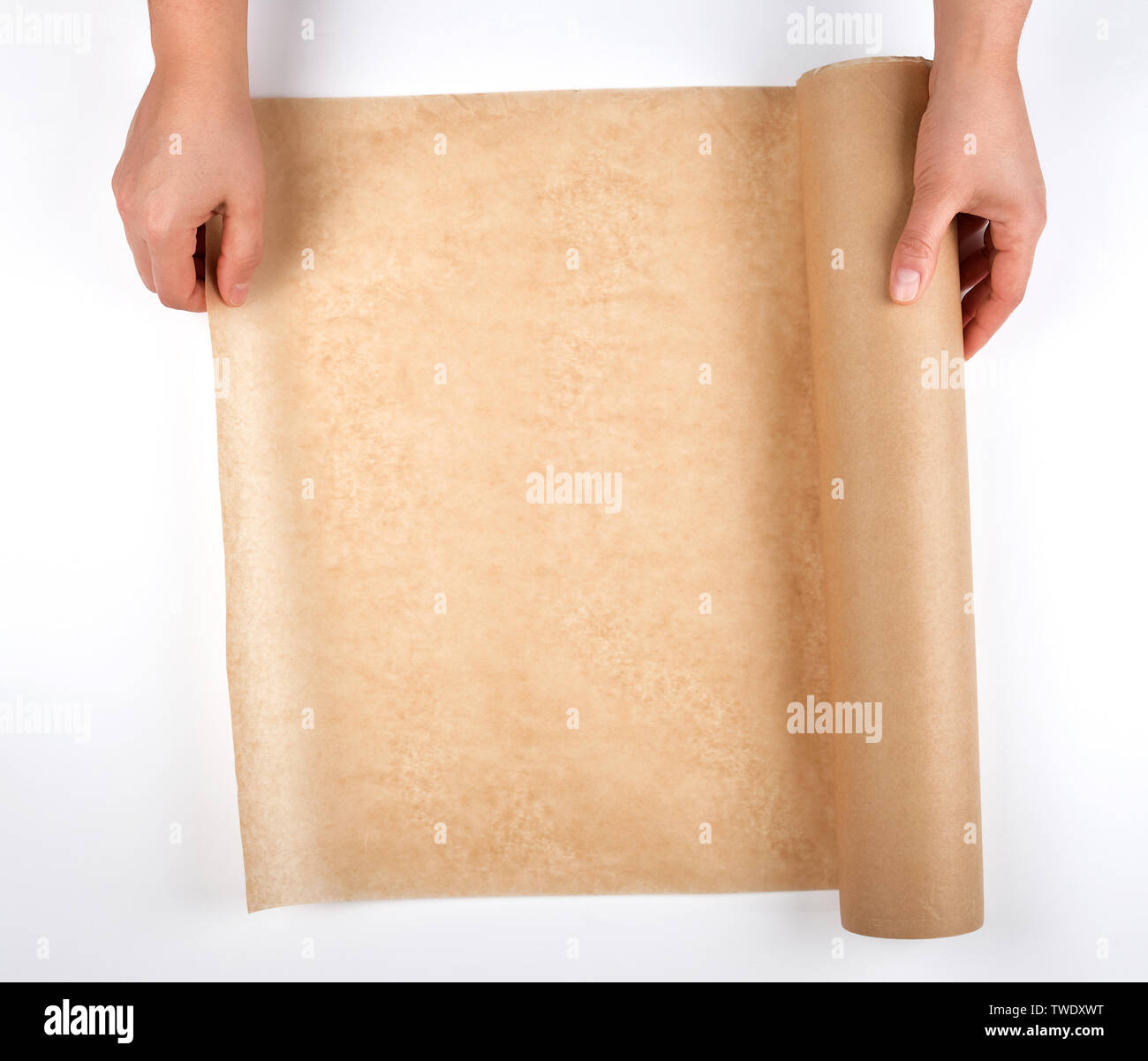 roll of brown parchment paper for baking food in female hands, white background, top view - Stock Image