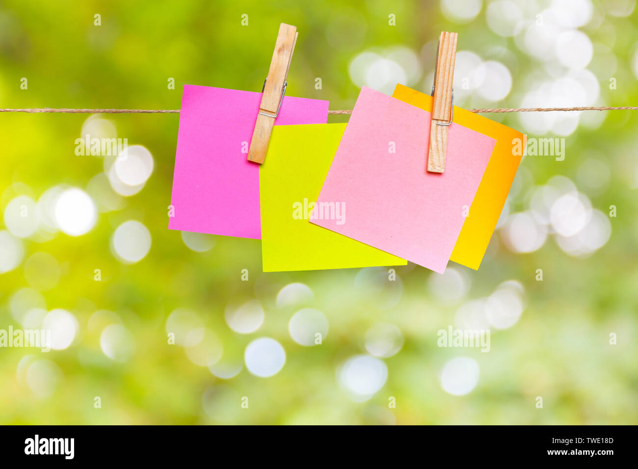 Blank paper notes with copy space pinned on rope - Stock Image