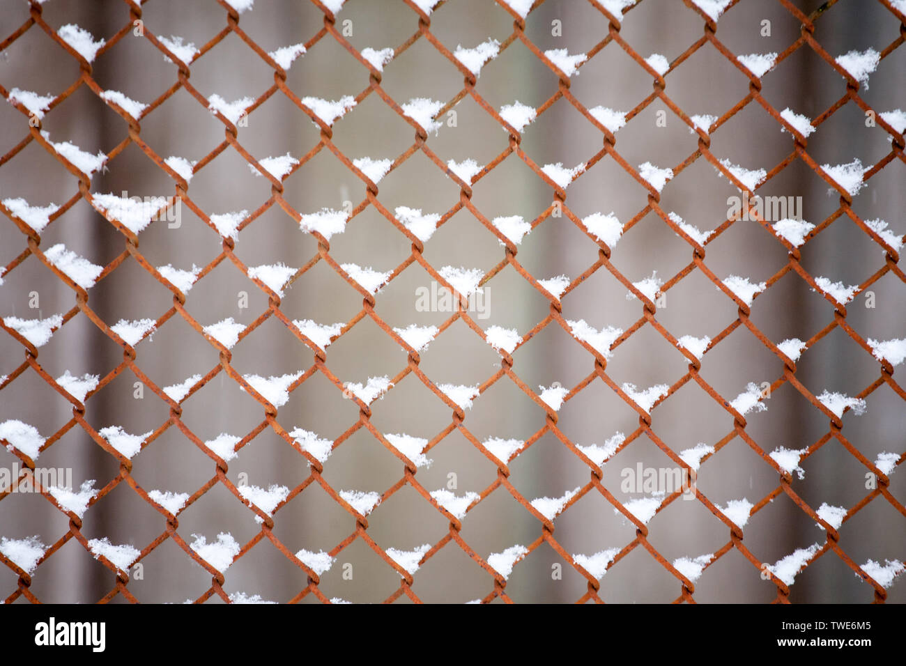old metal fence grid pattern closeup with snow cover Stock Photo