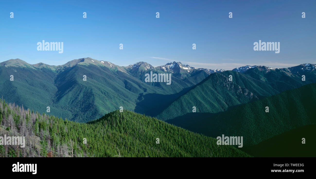 USA, Washington, Olympic National Park, Mt. Deception (center right) dominates view of peaks, ridges and valleys; view south from Deer Park. - Stock Image
