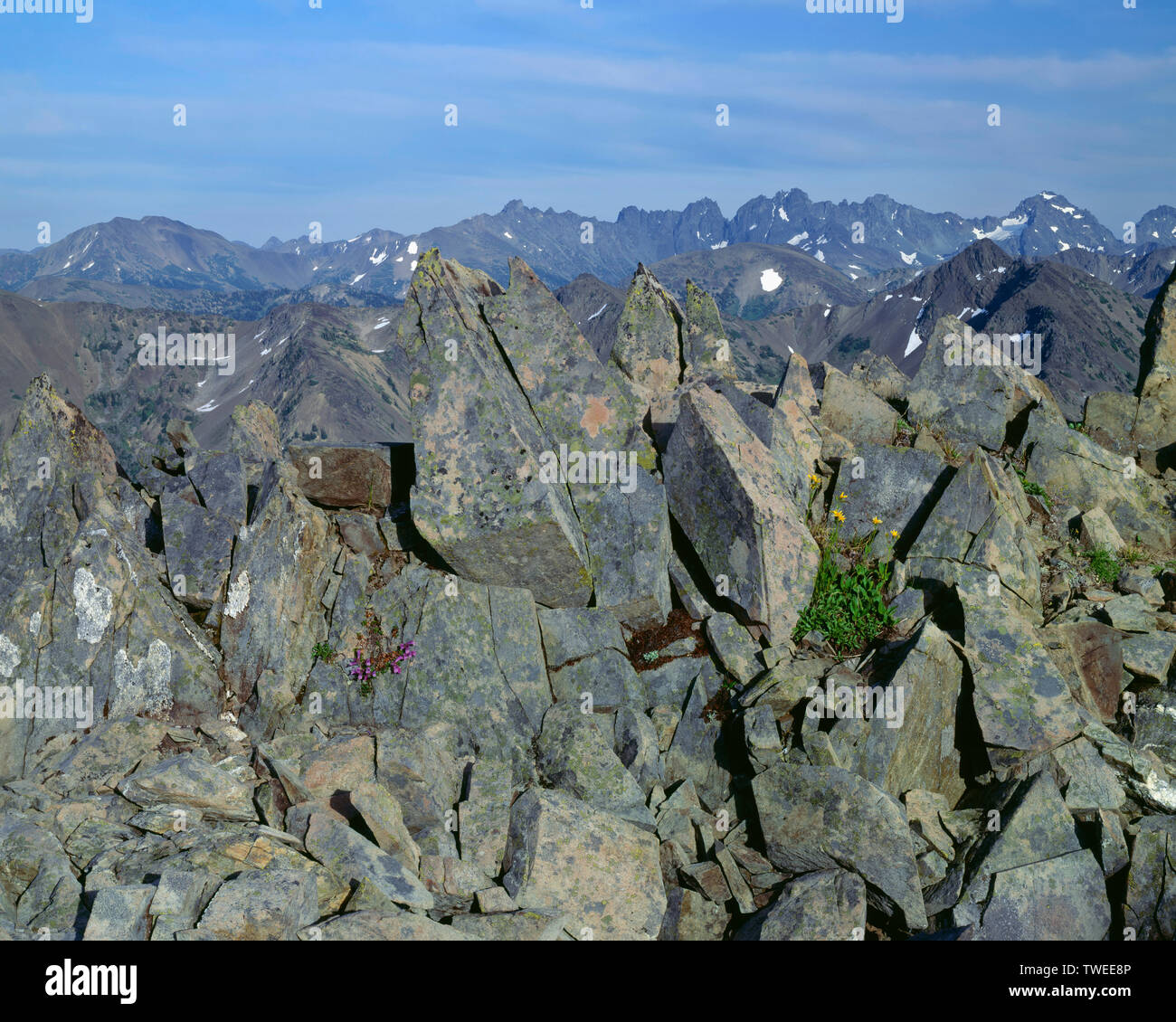 USA, Washington, Olympic National Park, Jagged boulders and easterly view of Gray Wolf Ridge and The Needles in the distance, Olympic Mountains. Stock Photo