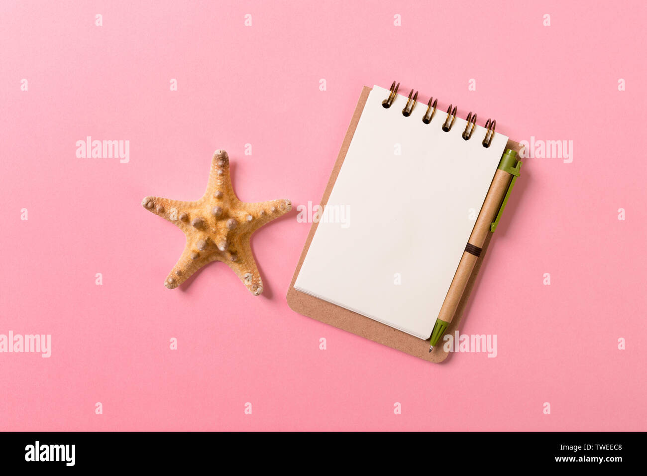 blank notebook with seashell for summer holiday pink background , Top view Flat lay concept. - Stock Image