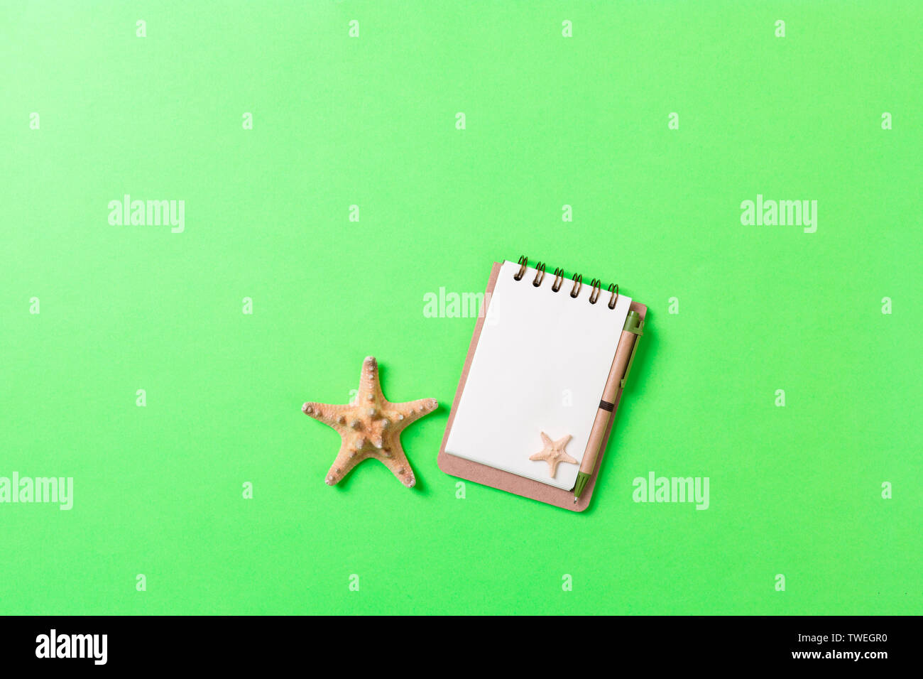 blank notebook with seashell for summer holiday green background , Top view Flat lay concept. - Stock Image
