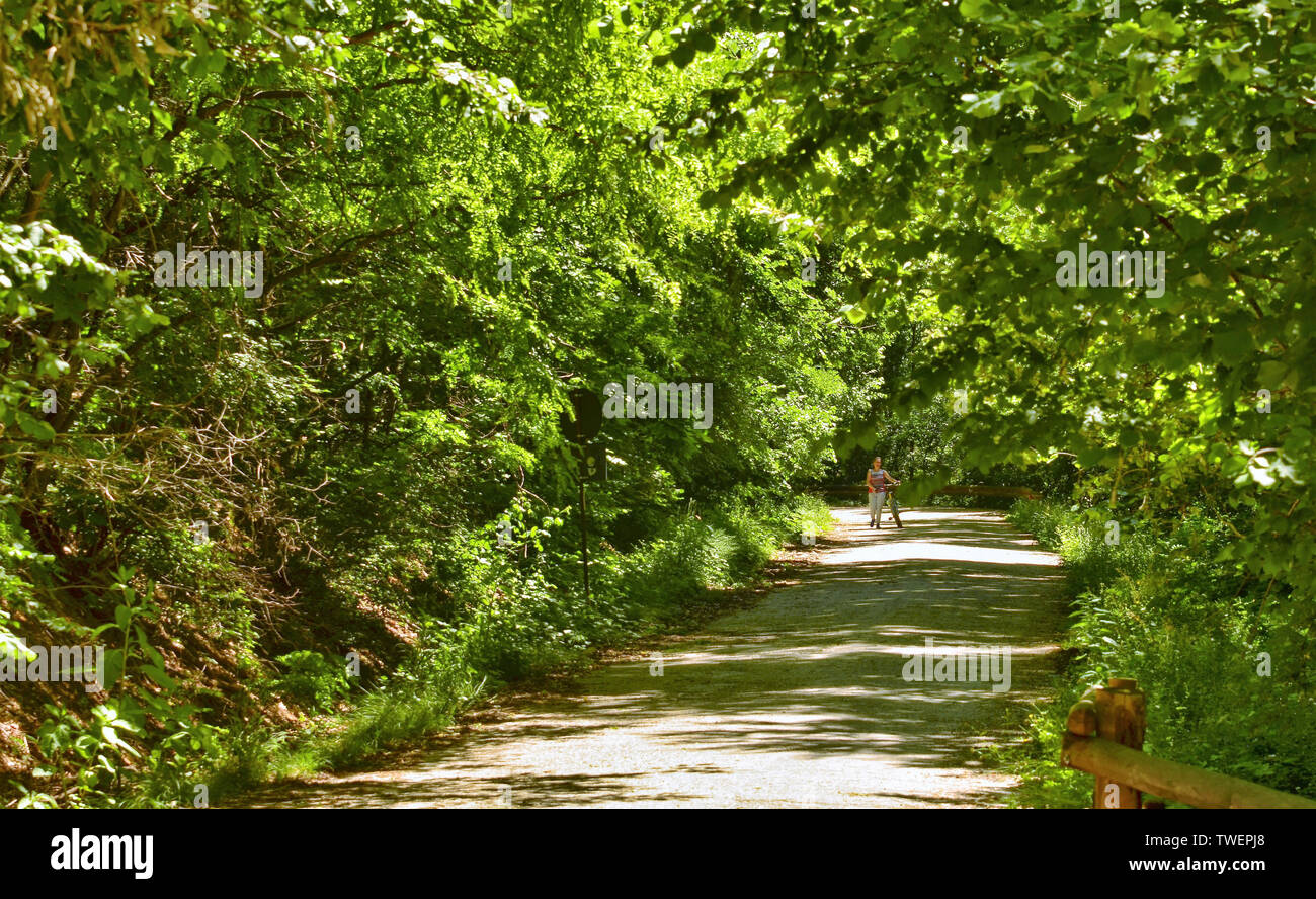 At a natural park, a woman takes her bike down the slope to avoid dangerous falls. You can enjoy the serene and bright atmosphere of the park. - Stock Image