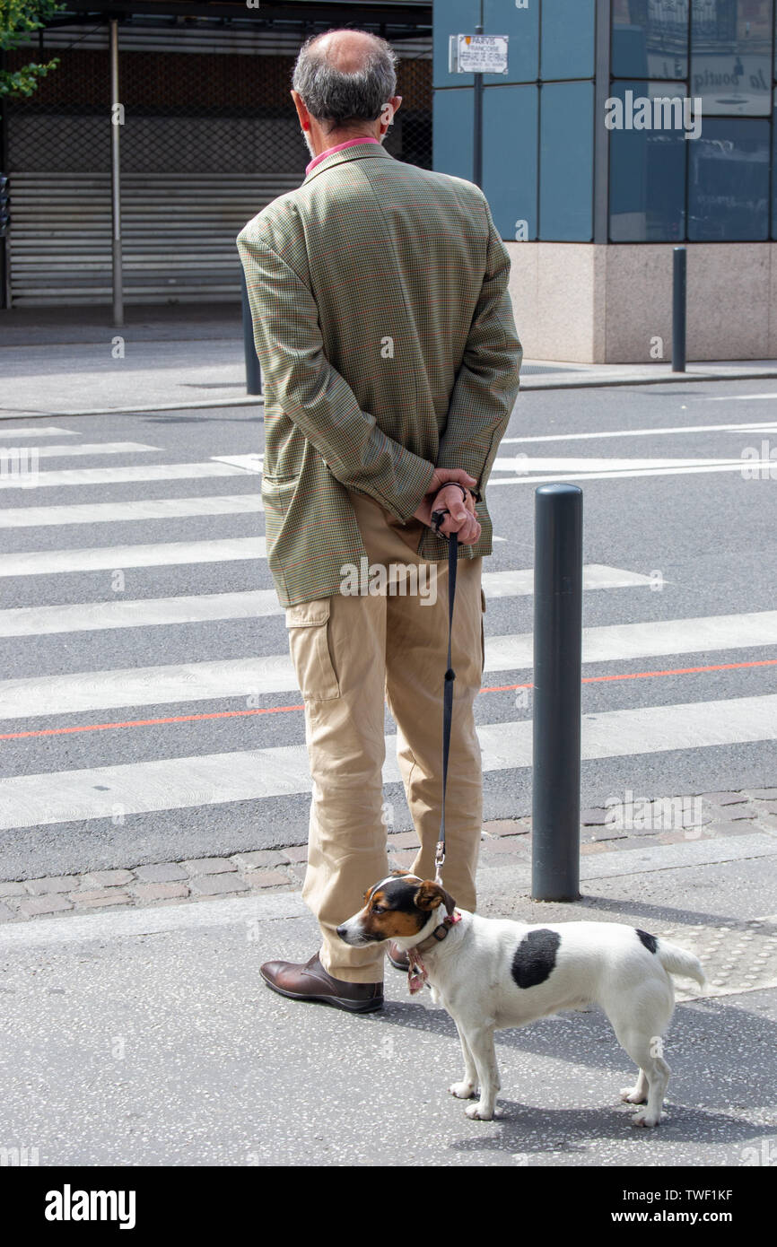 An old  man walking out his little dog on france streets - Stock Image