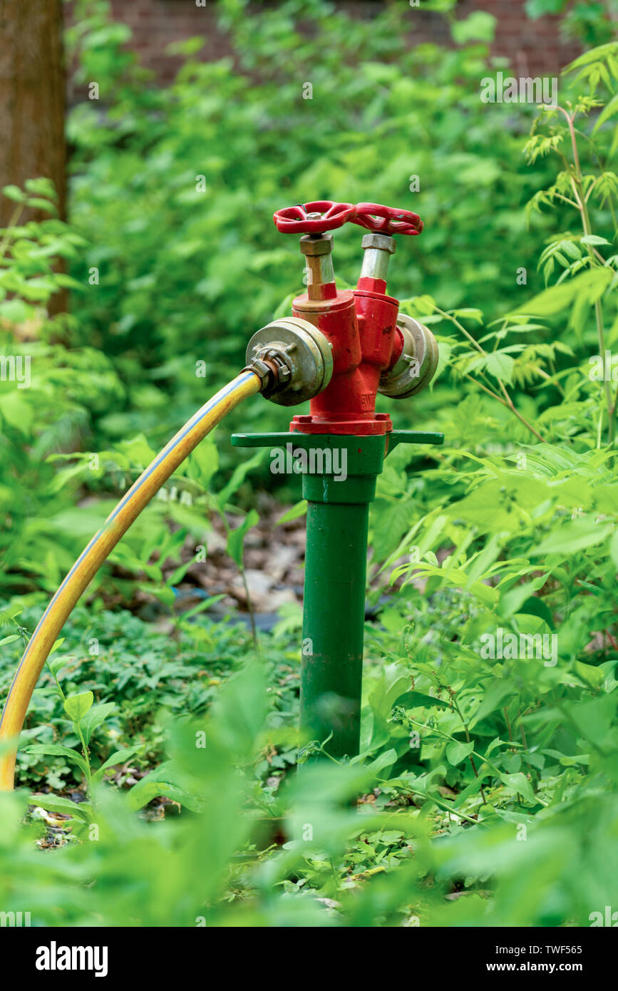 Professional irrigation system for public green areas and parks consisting of double tapping point and water hose for watering large areas of plants o - Stock Image