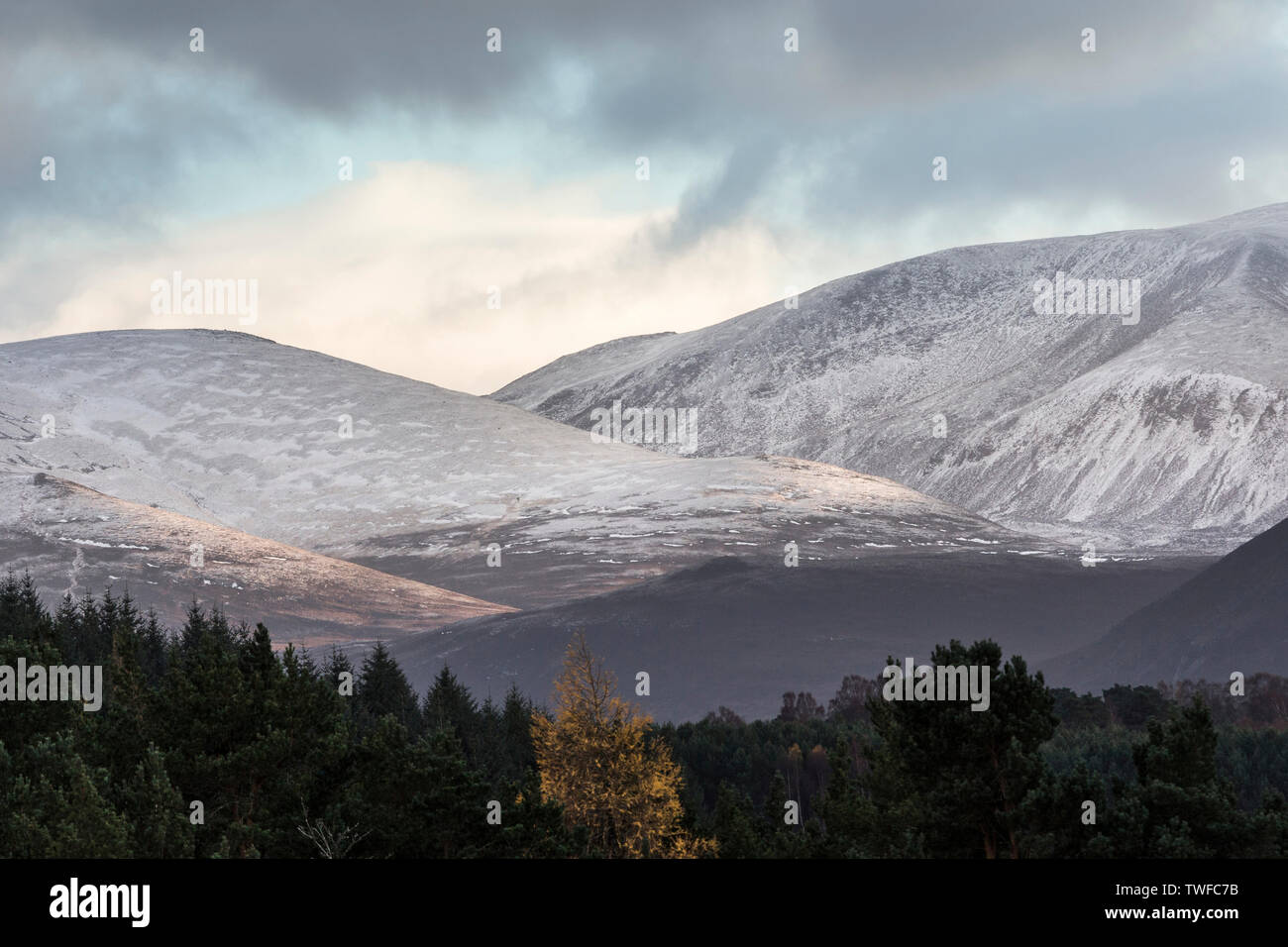 Cairngorms and Lairig ghru in the Highlands of Scotland. - Stock Image