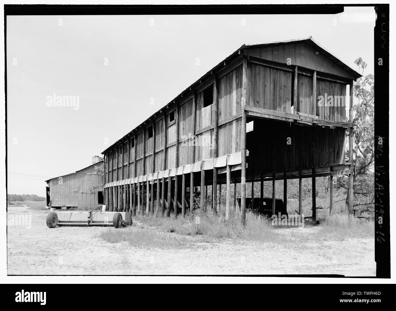 POLE BARN SHED USED FOR STORING TRACTORS (L2). - J. A. Minter and Son Plantation, 3 County Road 462, Selma, Dallas County, AL - Stock Image