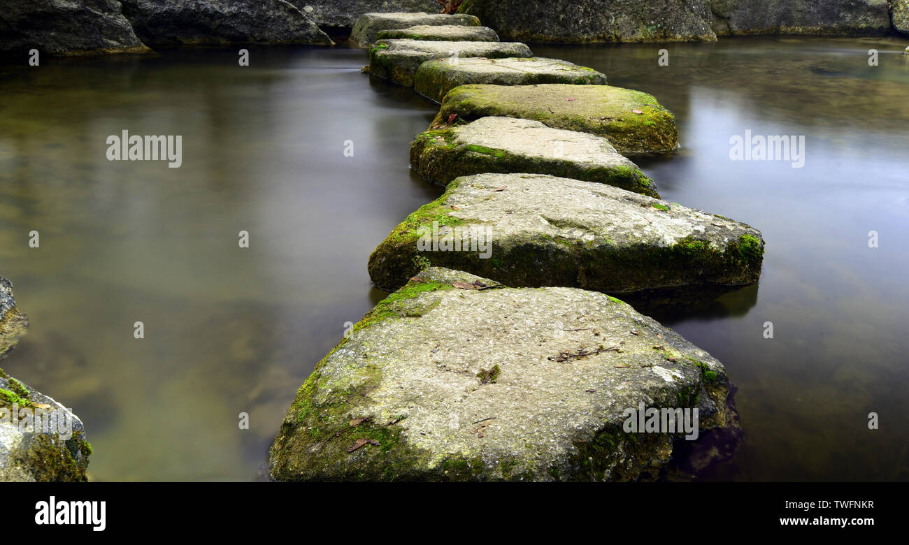 Treads in the water cross a river in calm waters - Stock Image