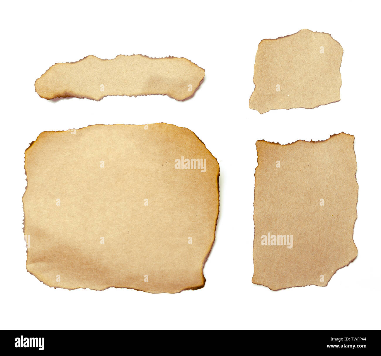 brown ripped pieces of paper on white background - Stock Image