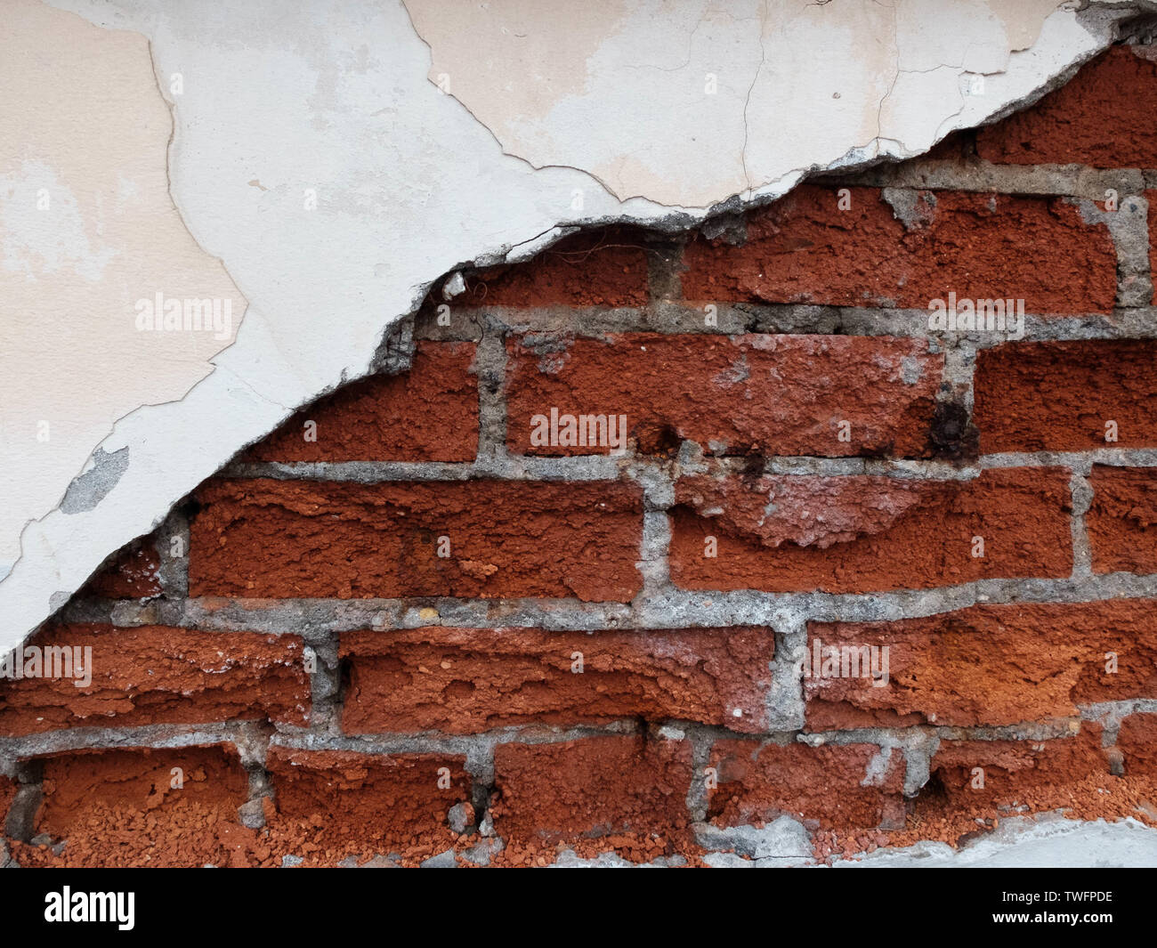 Decaying of erosion mossy red brick wall with remains of plaster of 18th century building - Stock Image