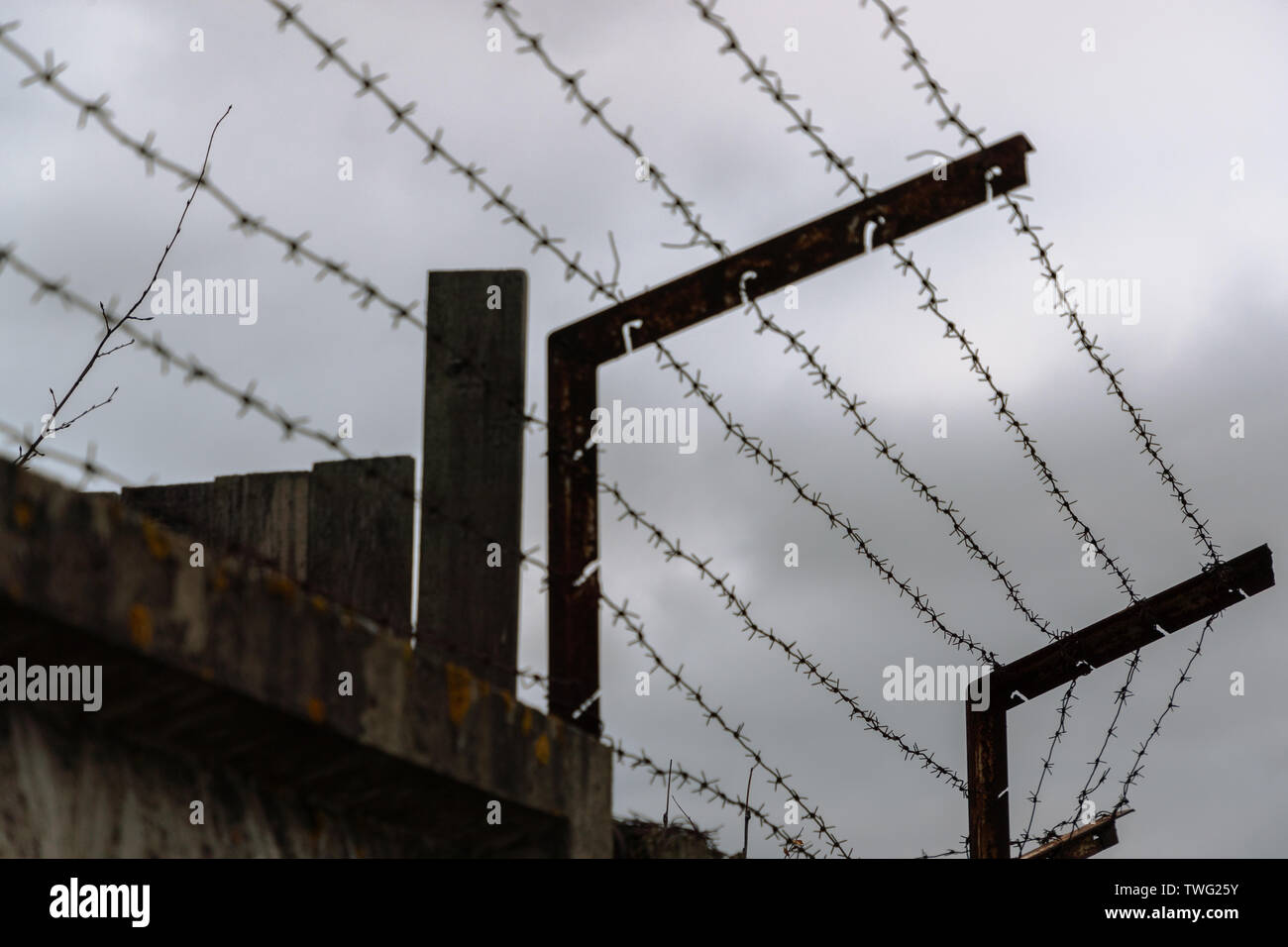 barbed wire on the fence in cloudy weather Stock Photo