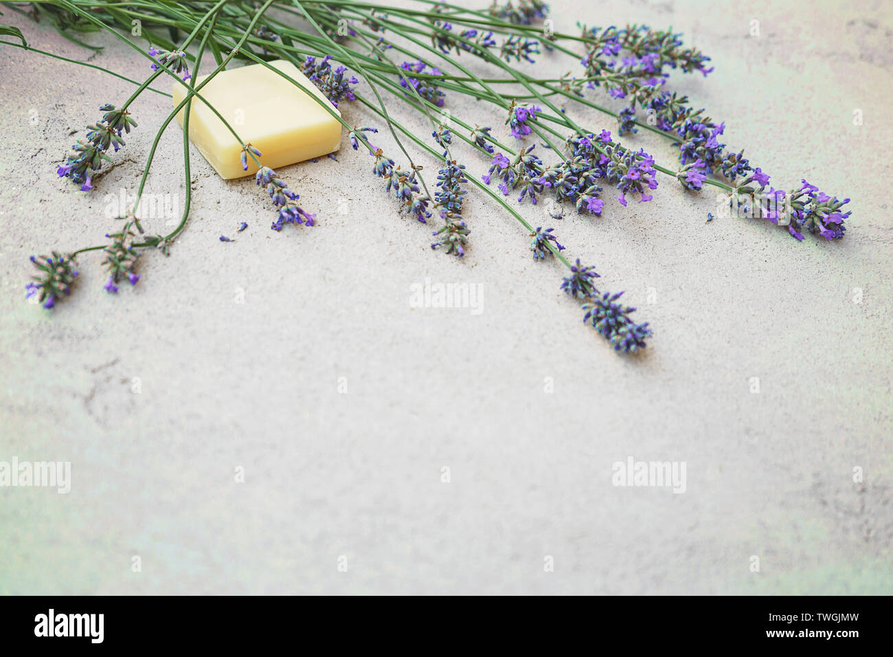 Lavender flowers and natural soap for bodycare on concrete background. - Stock Image