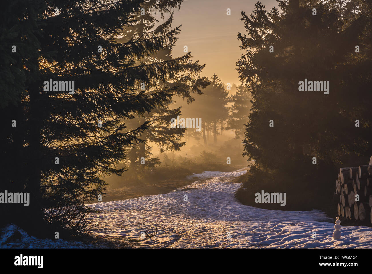 Trail on Wielka Sowa (Great Owl) mount in Landscape Park of Gory Sowie (Owl Mountains range) in Central Sudetes, Poland - Stock Image