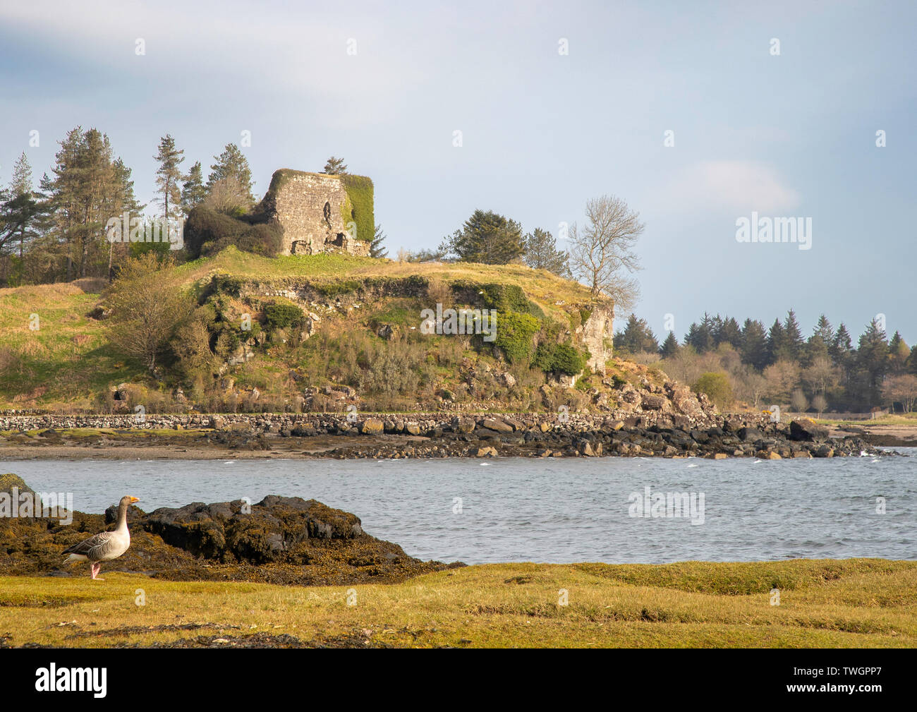 Aros Castle from the Salen side, Mull, Hebrides, Scotland - Stock Image