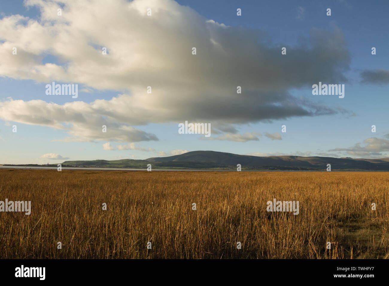 View from the shoreline near Dunnerholme and Askam-In-Furness. Black Combe and Millom viewed across the Duddon Estuary on the Cumbrian Coastline. Stock Photo