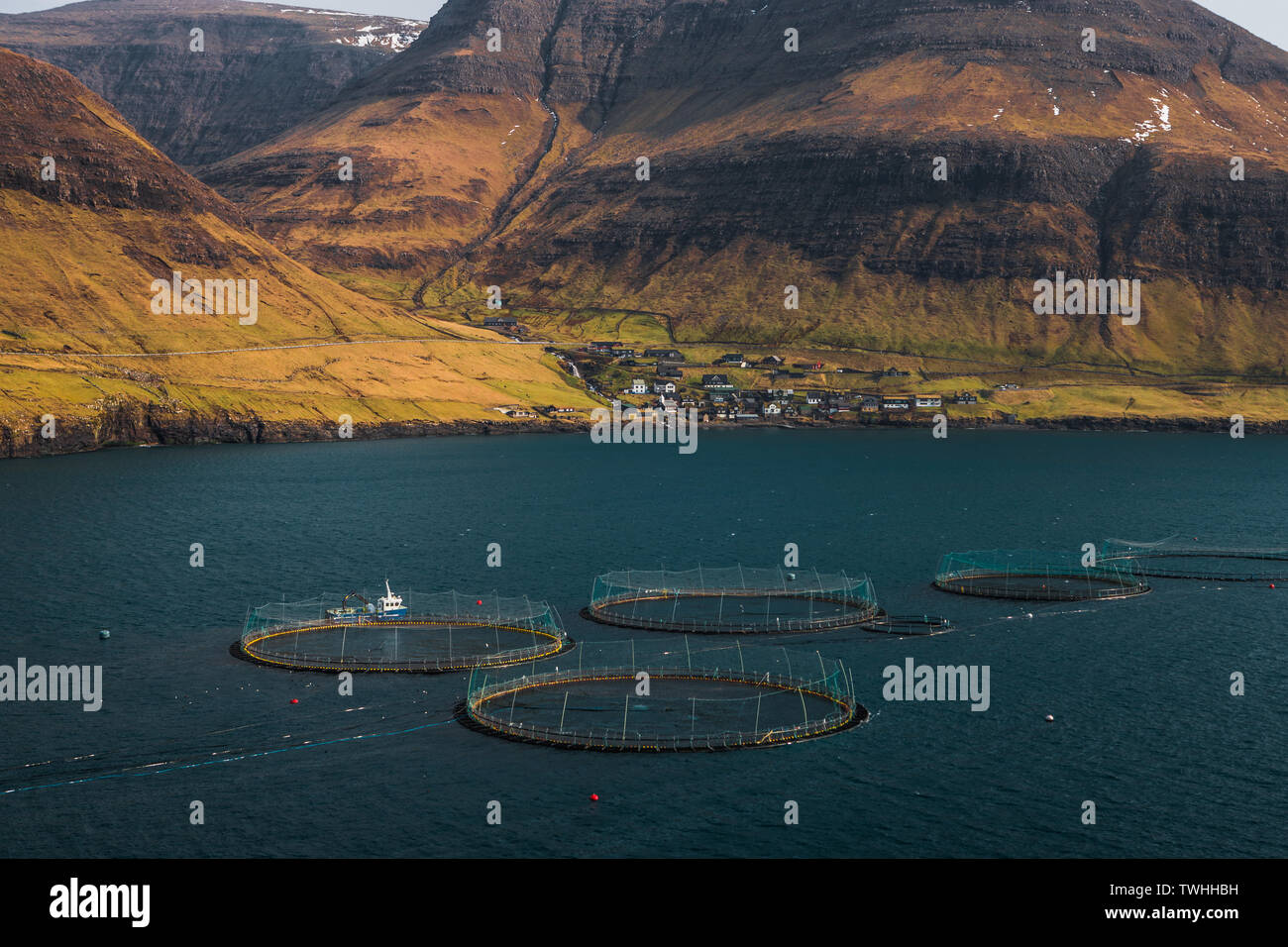 Sea water fish farms in front of the Faroese village Bour on hiking route towards Drangarnir and Tindholmur with snowy mountains (Faroe Islands) - Stock Image