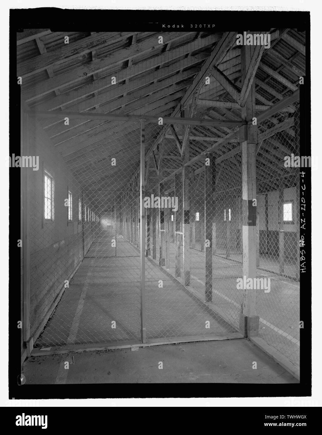 SIDE AISLE FROM WEST SHOWING TIMBER STRUCTURE AND ADDED WIRE PARTITIONS - Fort Huachuca, Cavalry Stable, Clarkson Road, Sierra Vista, Cochise County, AZ - Stock Image