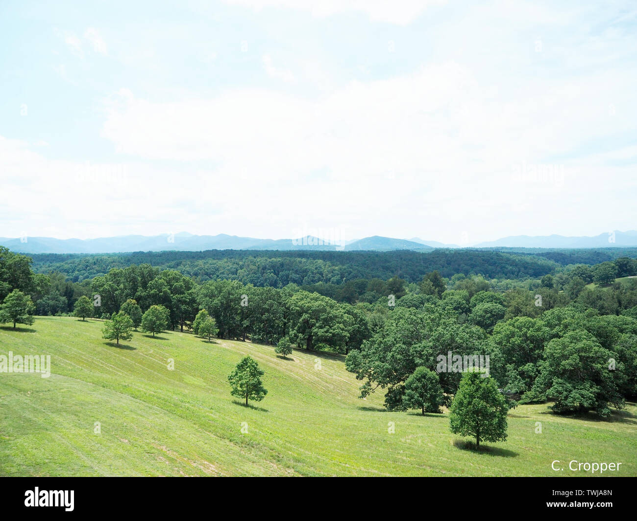 View Of Blue Ridge Mountains From Balcony At Biltmore