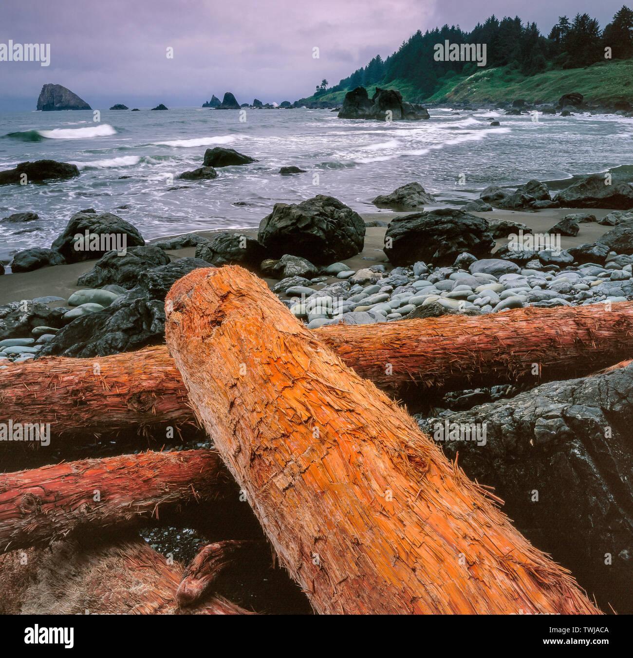 Driftwood, Hidden Beach, Redwood National Park, California - Stock Image