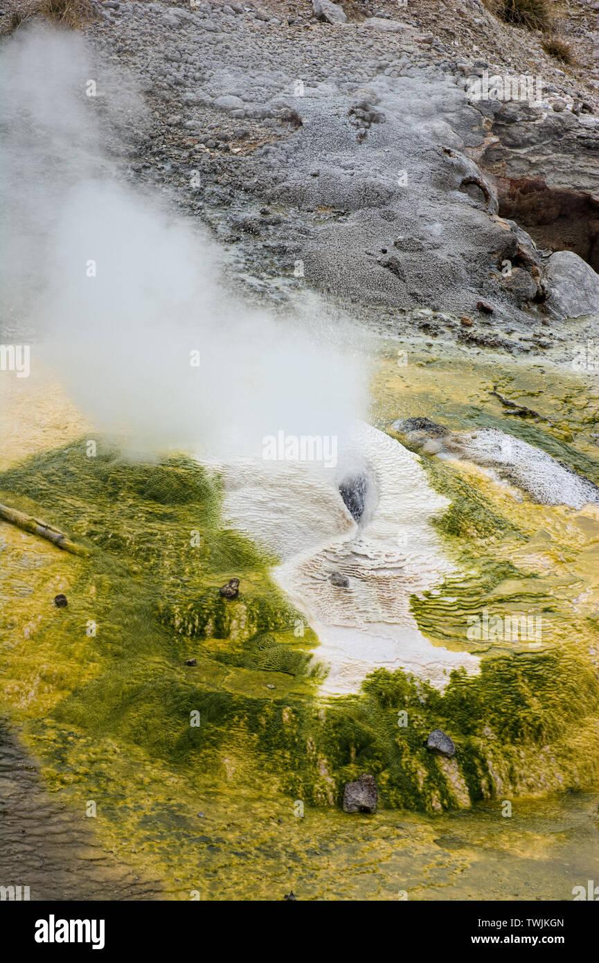 Norris Geyser Basin - Stock Image