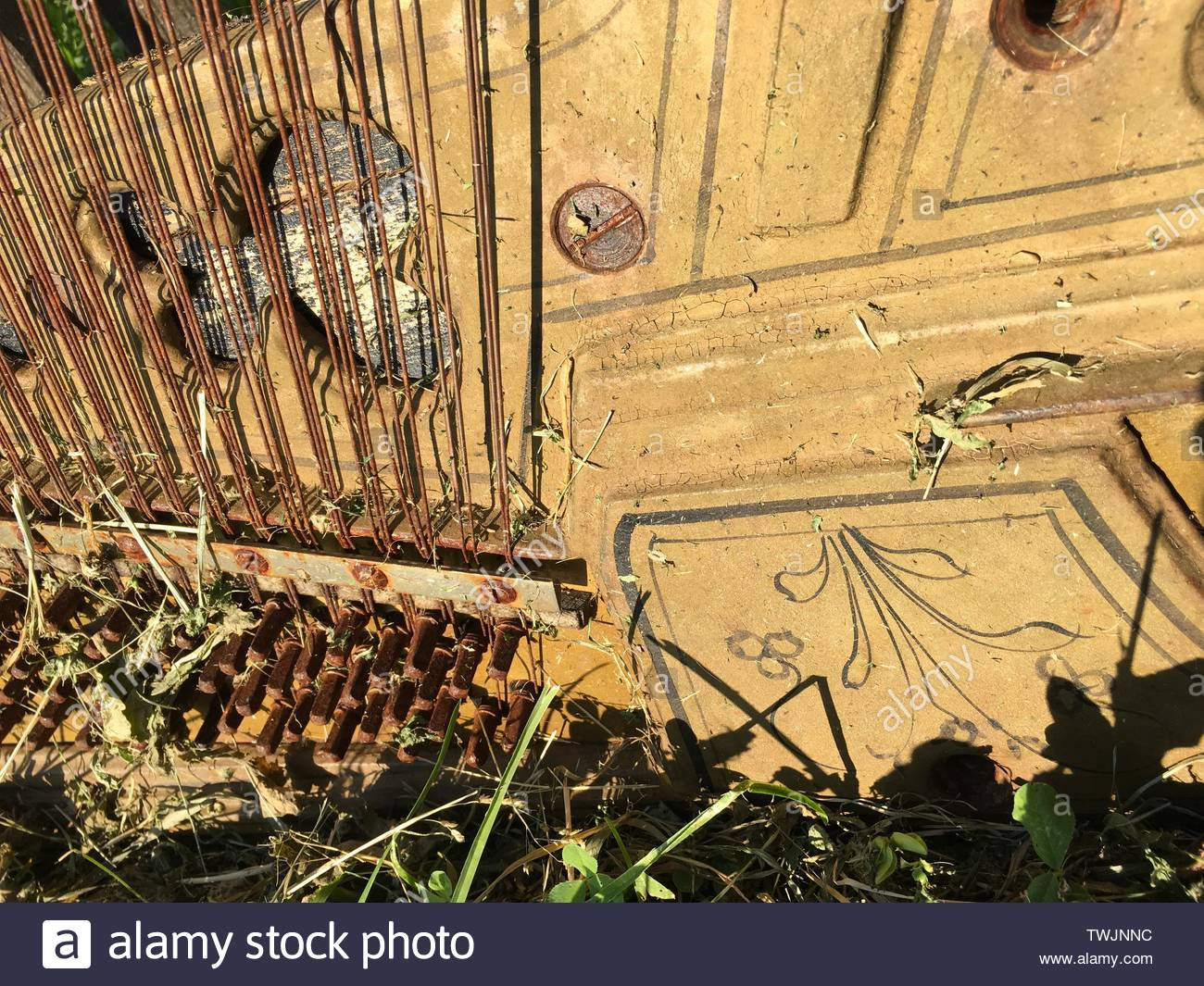 vintage musical instrument, internal parts, strings and pattern - Stock Image