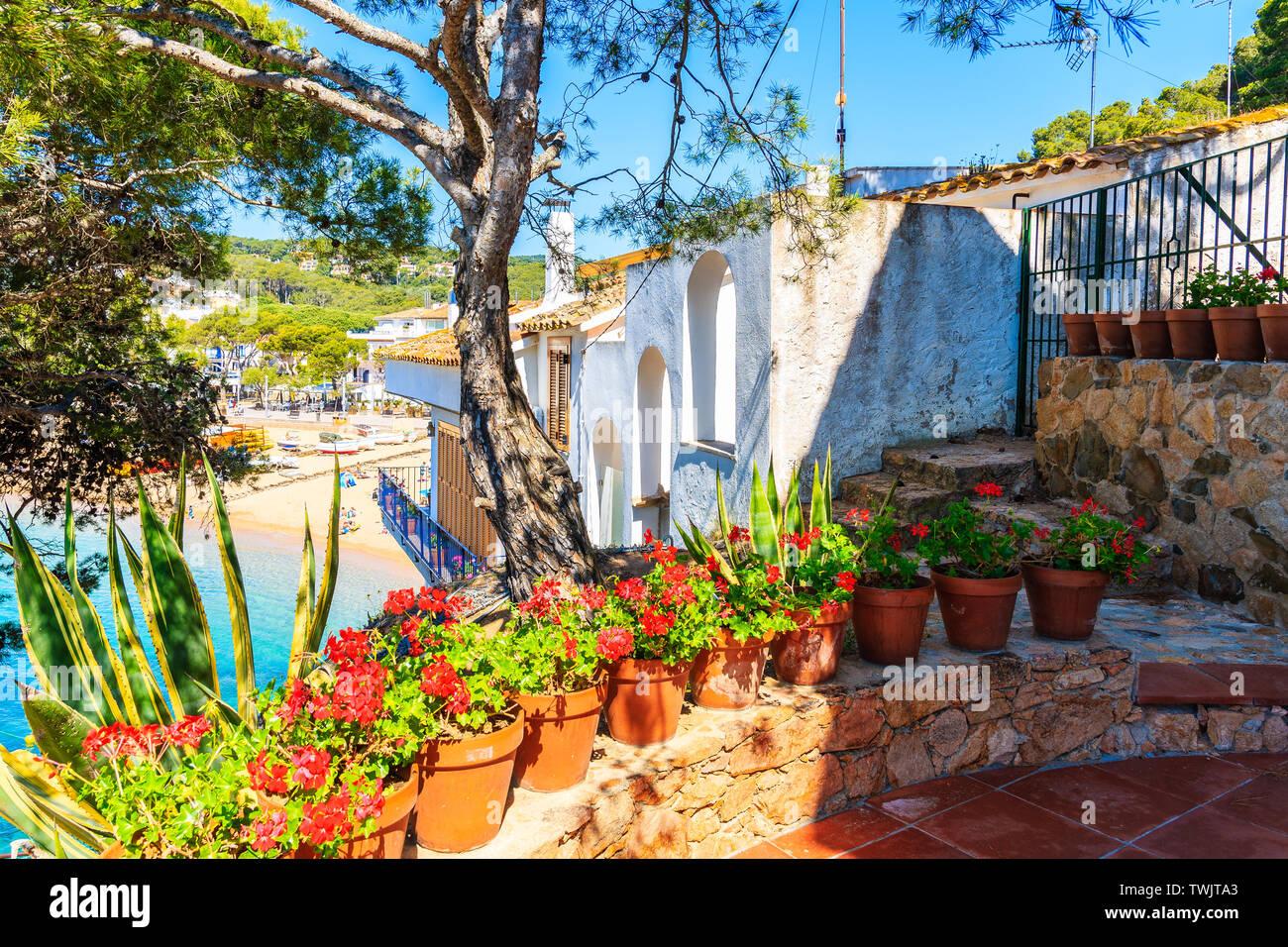 Flowers in pots on terrace of a house in Tamariu village, Costa Brava, Spain Stock Photo