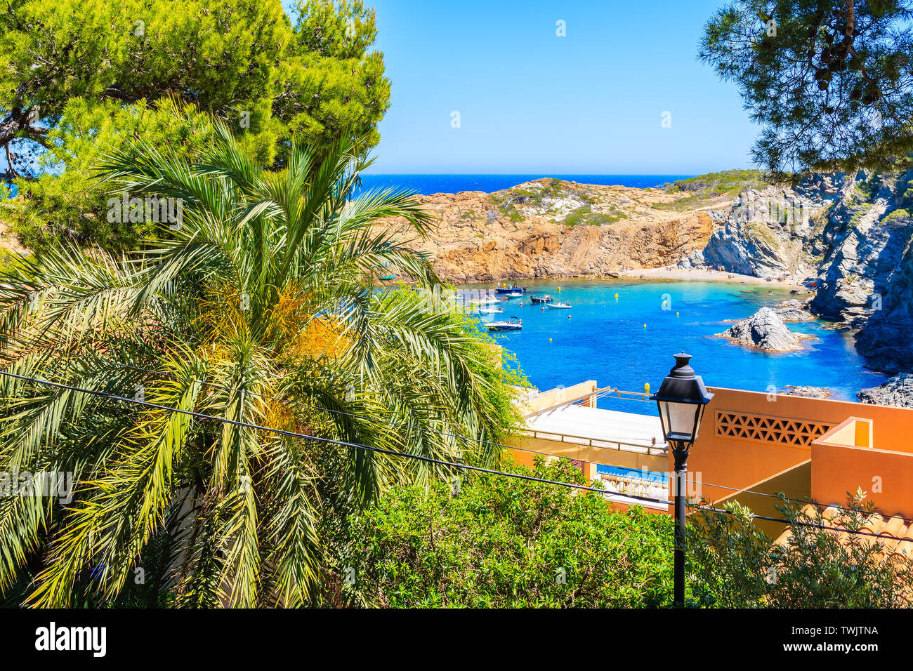 View of  Sa Tuna sea bay with palm tree leaves in foreground, Costa Brava, Spain Stock Photo
