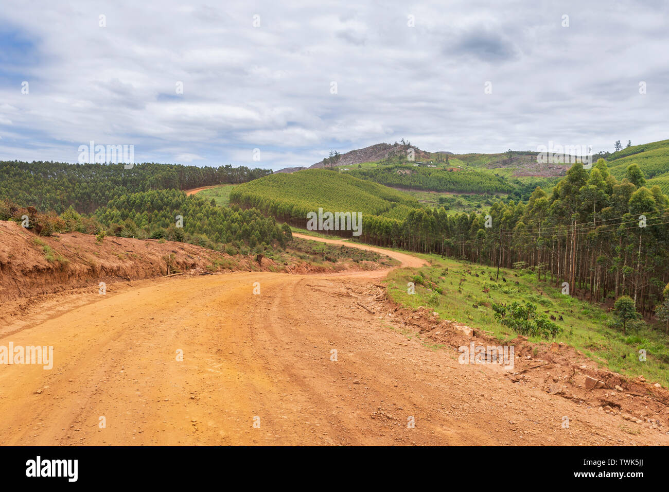 Road in Swaziland - Stock Image