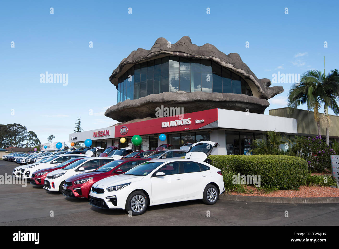 One of the growing list of Big Things in regional towns around Australia, this is the Big Oyster mounted on top of a car dealership in Taree NSW - Stock Image
