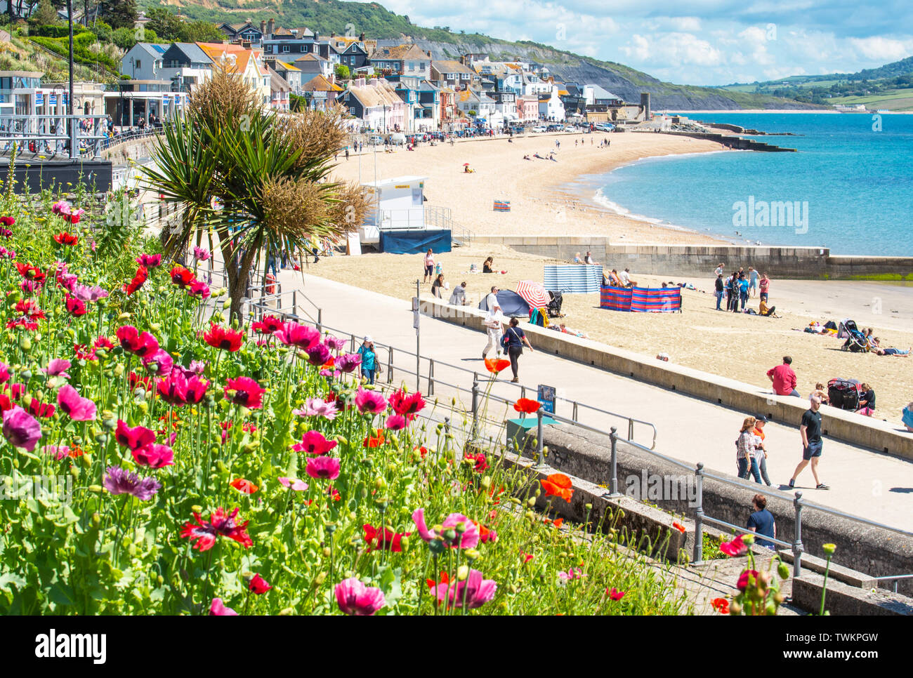 Lyme Regis, Dorset, UK. 21st June 2019. UK Weather: After a cloudy start to the summer solstice, glorious warm sunshine returns to the picturesque seaside resort of Lyme Regis. Visitors enjoy the welcome return of the sun and blue skies on the sandy beach and look forward to the warm and sunny conditions forecast over the weekend.  Credit: Celia McMahon/Alamy Live News. - Stock Image
