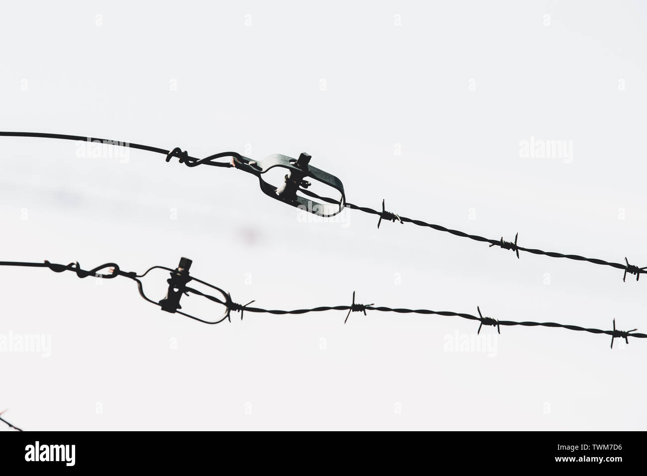 Barbed wire with blue sky - Stock Image