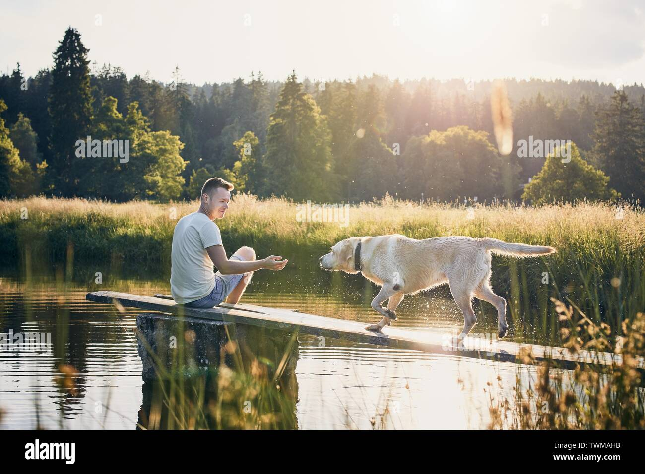 Idyllic summertime with dog. Young man sitting on pier and playing with his labrador retriever. - Stock Image
