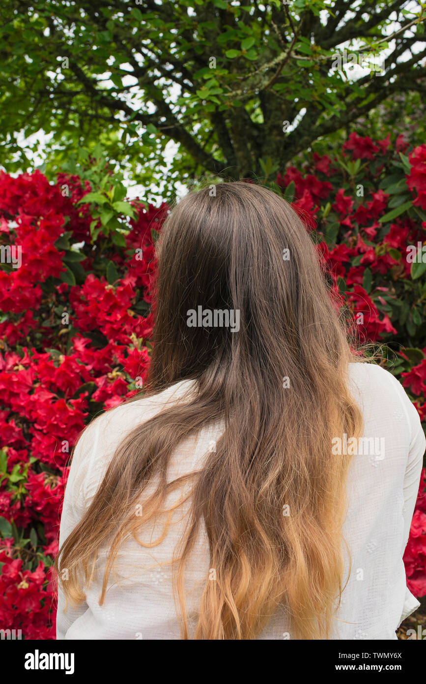 A young woman and a Rhododendron bush. - Stock Image
