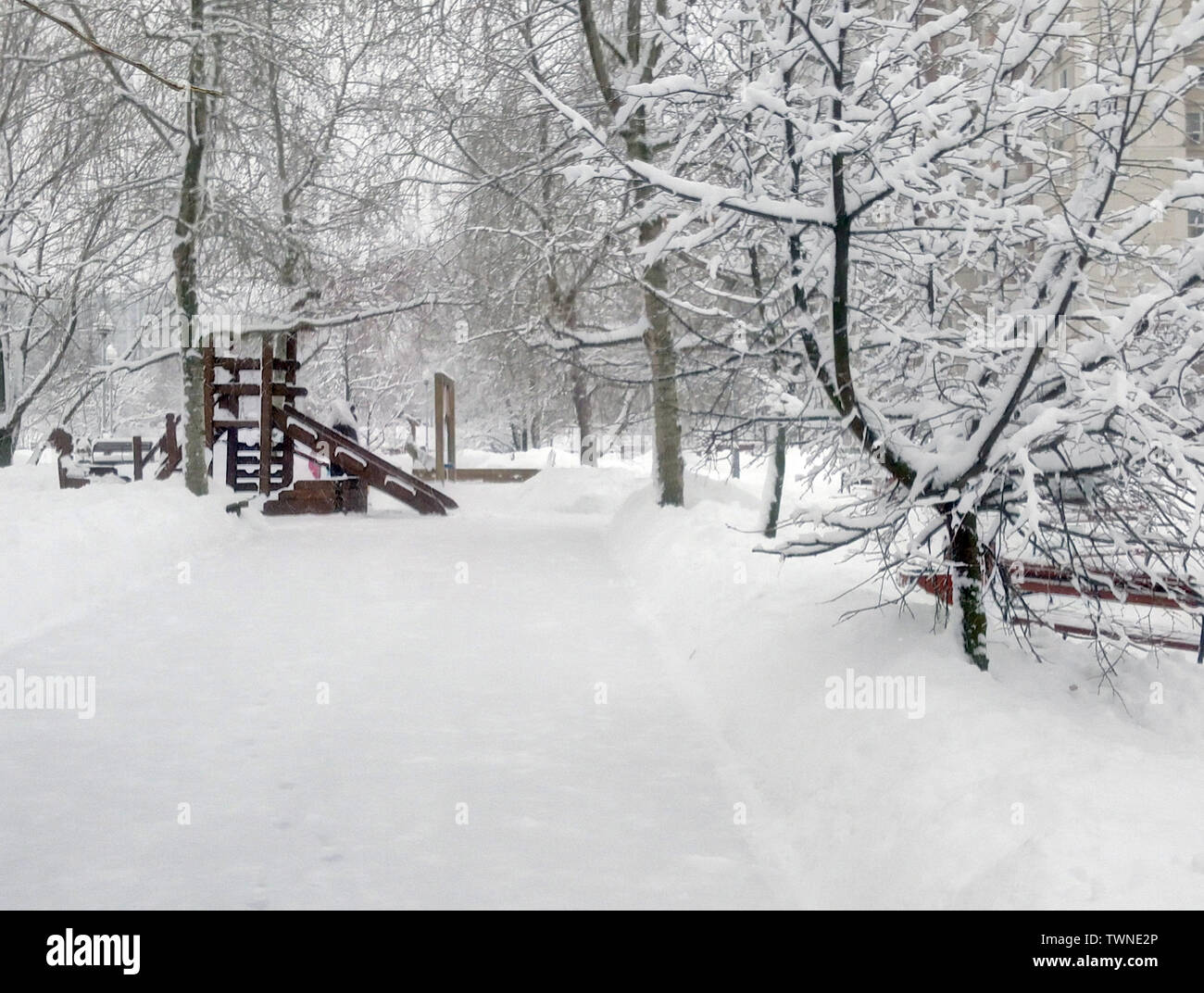 city park after snowfall at day - Stock Image