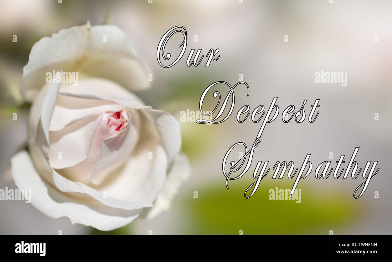Deepest Sympathy Bereavement Mourning Condolence Cards