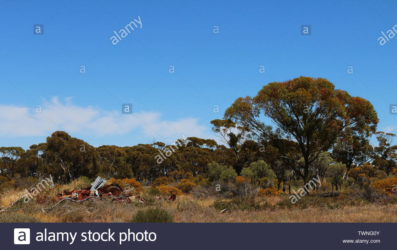 Scrap metal dumped in the beautiful environment besides Great Eastern Highway in Central Wheatbelt, Western Australia Stock Photo