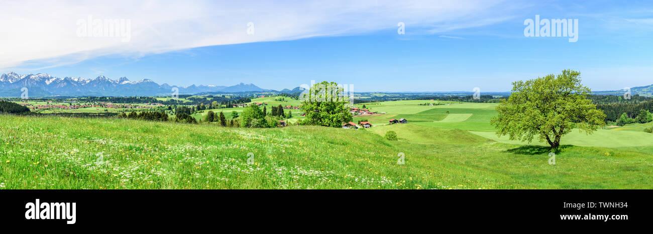 Idyllic view to springtime landscape in bavarian alpine foothills near Trauchgau in eastern Allgäu - Stock Image
