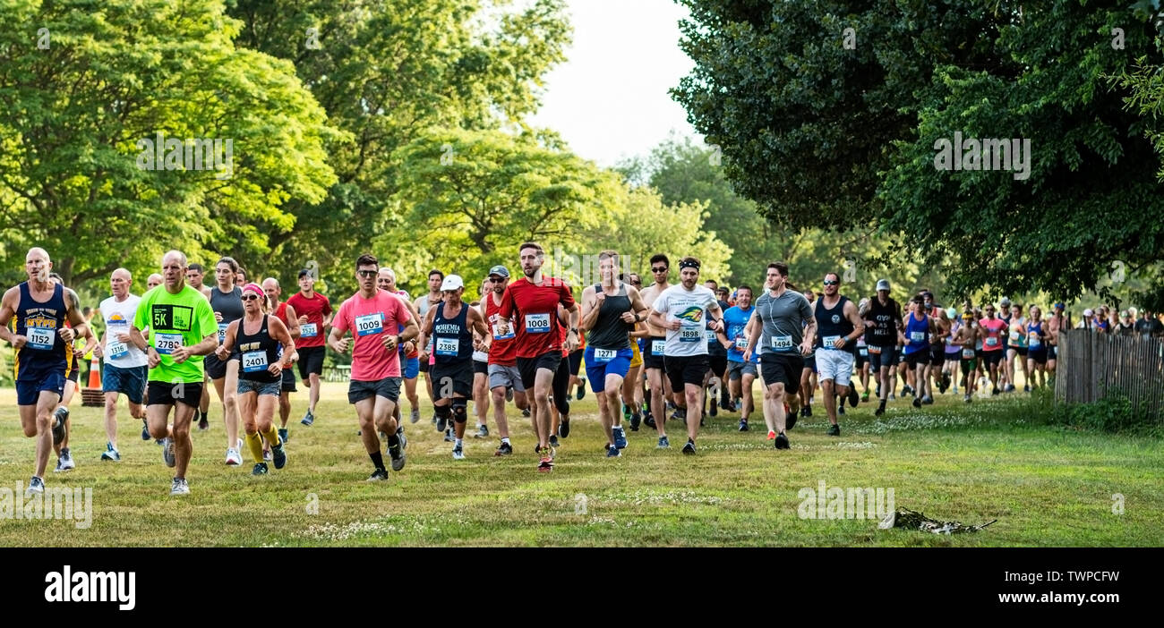 Kings Park, New York, USA - 17 June 2019: runners in the middle of the pack, moments after the start of the summer series 10K running across the grass - Stock Image