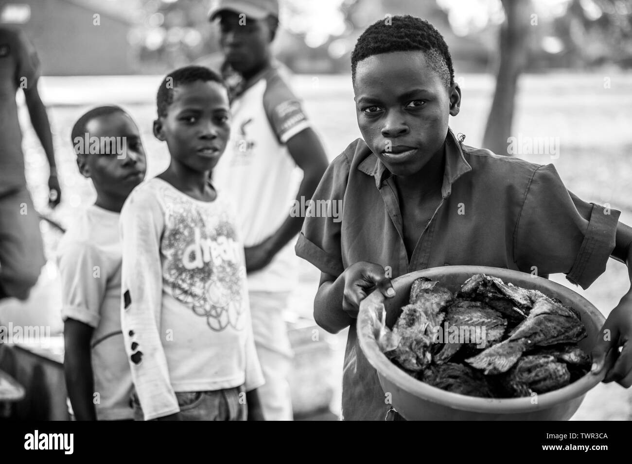 Child street vendors selling their Chambo fish - Stock Image