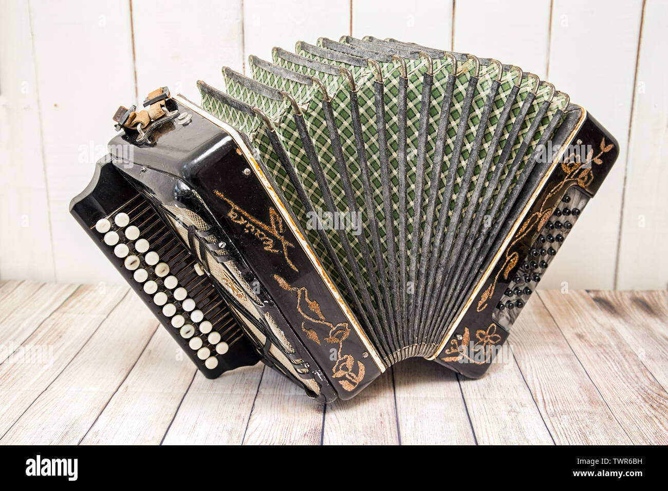 Accordion with furs spread out. Russian folk musical instrument - Stock Image
